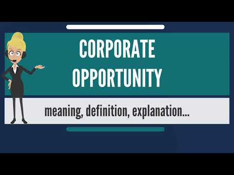 What is CORPORATE OPPORTUNITY? What does CORPORATE OPPORTUNITY mean?