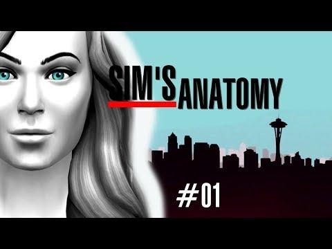 SEJA BEM VINDA MEREDITH GREY! #01 - Sim's Anatomy │The Sims 4 (Gameplay)