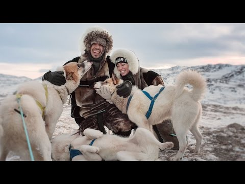 Epic Dogsledding and Fire Coffee - [Ilulissat, Greenland]