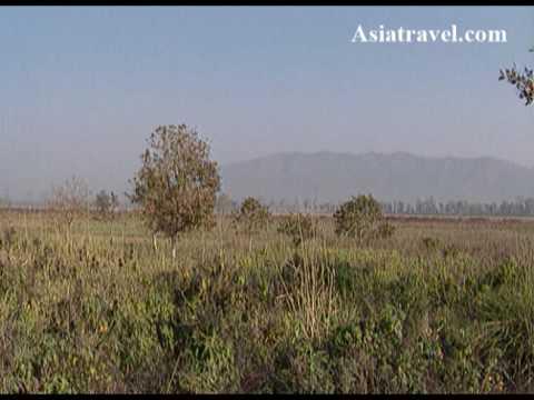 Himalayas Terai Valley, Nepal by Asiatravel.com