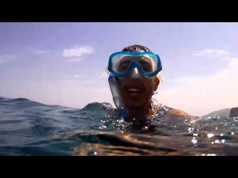 Dakuwaqa's Garden   Underwater footage from Fiji