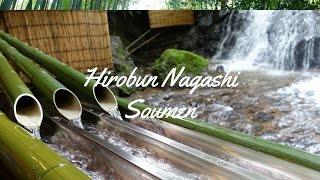 Hirobun Nagashi Somen, Kyoto || #acwxploresjapan