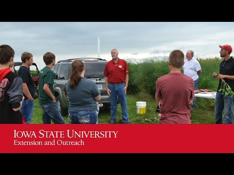 Precision Agriculture & Animal Science Field Days