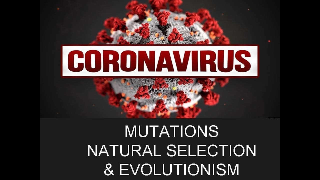 corona virus,natural selection, mutations & evolution ...