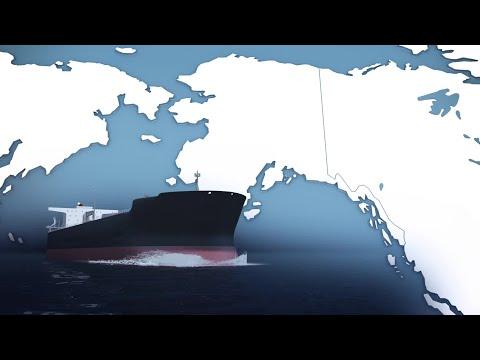 The 1989 US Exxon Oil Spill: Animated Explainer