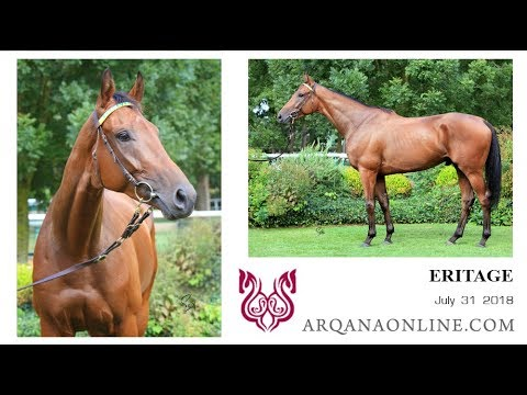 ERITAGE  / Martaline - H. AQPS  - ARQANAonline