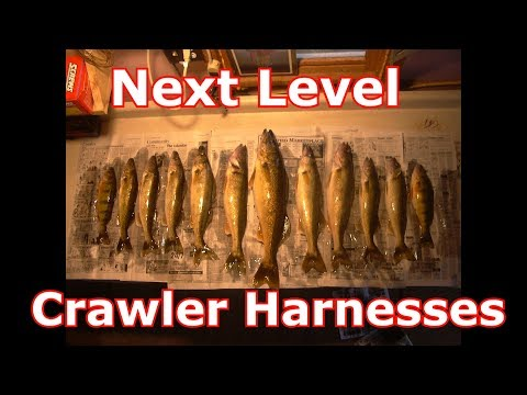 Walleyes And Crawler Harnesses - Beyond The Normal Methods
