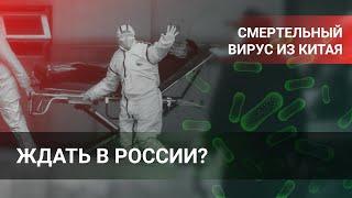 Смертельный вирус из Китая. Ждать в России?