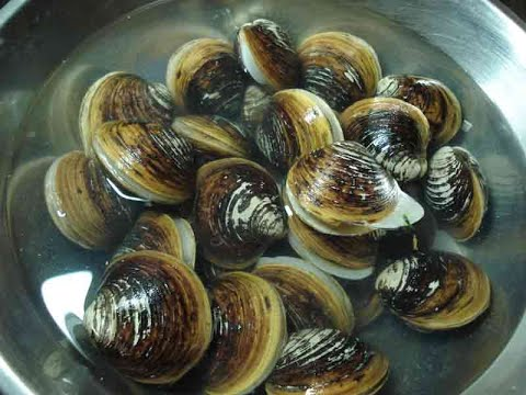 Cooking Clams & Mussels Recipe - Collect Clams & Mussels Cook eating delicious
