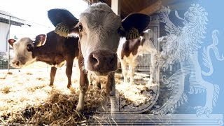 Bayerische Agrarpolitik - Bayern