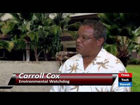 Watchdogging the Government with Carroll Cox