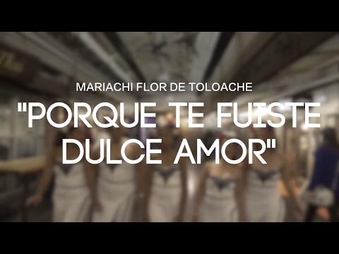 Mariachi Flor De Toloache - Porque Te Fuiste Dulce Amor