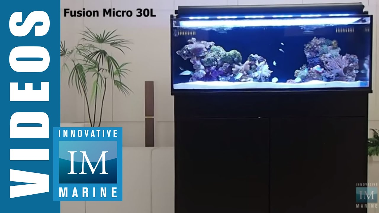 bits a projects tank of stand strong light aquarium build random inexpensive