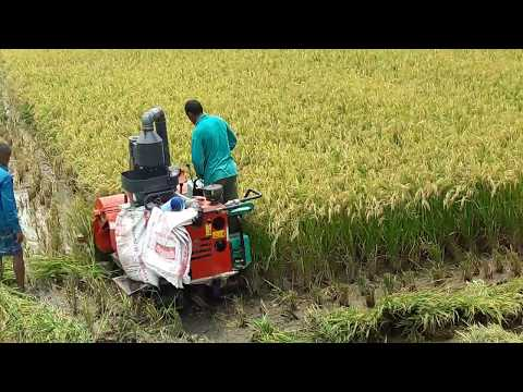 গ্রাম বাংলায় বেড়েছে আধুনিক কৃষি যন্ত্রপাতির ব্যবহার (Modern agricultural machinery)