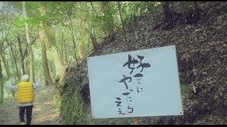 RYO the SKYWALKER / 好きにやったらええ(Special Edit)MUSIC VIDEO
