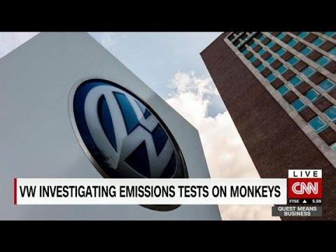 VW's diesel scandal now involves monkeys
