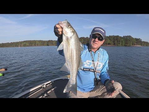 FOX Sports Outdoors SouthWEST #22 - 2017 West Point Lake Georgia Striper Fishing