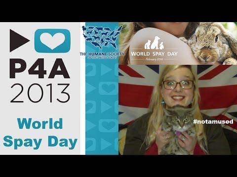 World Spay Day (USHS) - #P4A 2013
