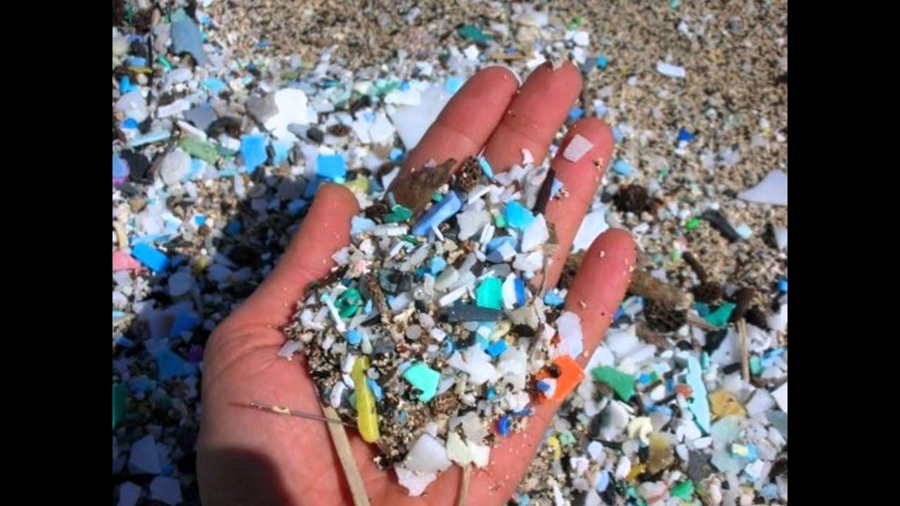 Billedresultat for the plastic problem