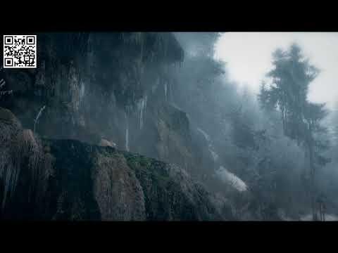 Trailer Wild Carpathia