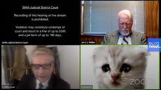 ¡Cuidado con los filtros de zoom! El gato abogado, rompe (de risa) Internet