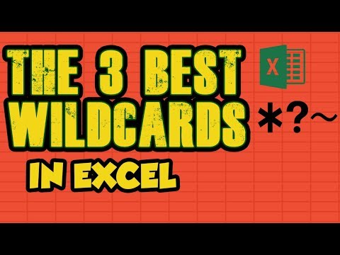 6. WildCard Characters in Excel    Partial Match Criterias