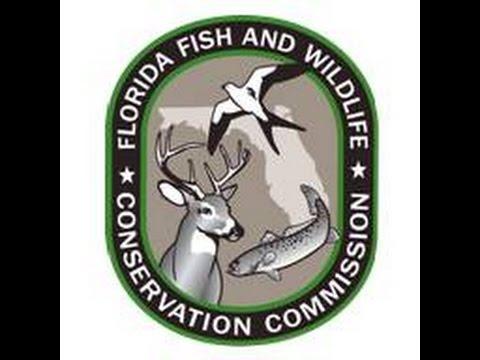 Commission Meeting 2-4-2015 Part 1 Jacksonville