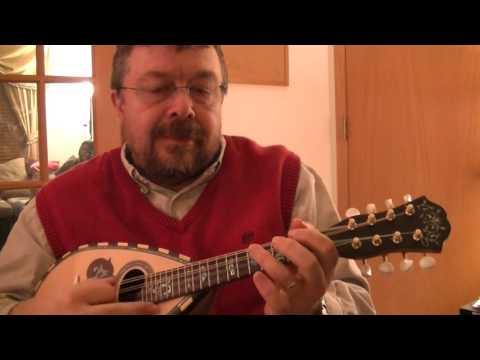 Willard Losinger Performs