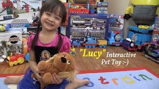Animal Toy Pet For Little Girls: Club Petz' Interactive Dog Lucy Unboxing And Playtime Fun