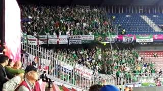 "Northern Ireland fans ""Will Grigg"