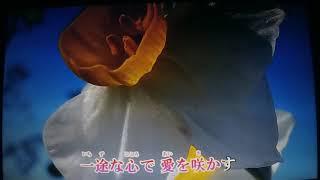 こんにちは~~(^◇^)・・・ファン・カヒさんは韓国出身の歌手さんです...