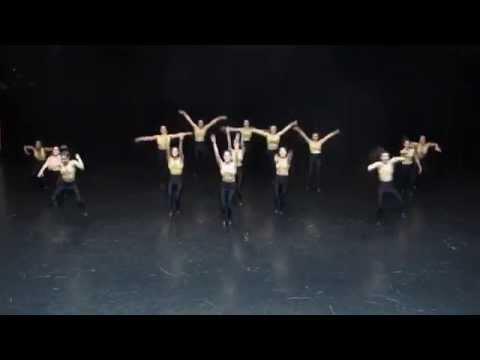 Harvard Crimson Dance Team Nationals Routine 2014