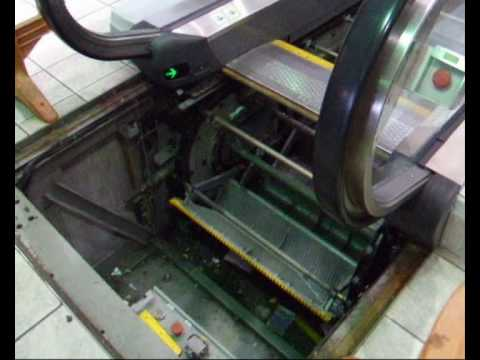 Escalators Are Terrifying They Are The New Death Trap For