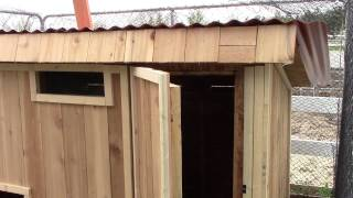 Diy Chicken Coop Design