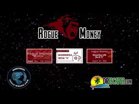 Interview with V the Guerrilla Economist from Rogue Money