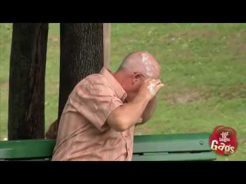 Bird Poops On Sleeping Man