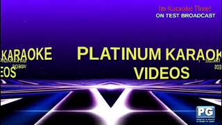 Its Karaoke Time: Platinum Karaoke Videos (Aray - Mae Rivera)