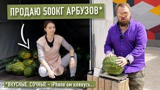 Wylsacom продает фуру арбузов
