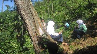 Unik, Siswa belajar di hutan