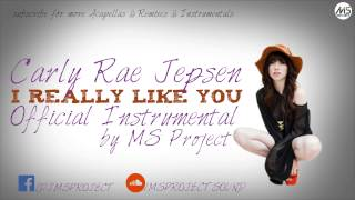 Carly Rae Jepsen - I Really Like You (Official Instrumental) + DL