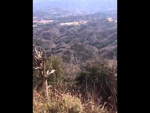 Mines view of Japan