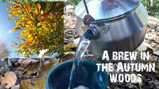 GSI Glacier kettle | a brew in the autumn woodland