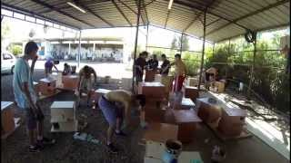 30 Barn Owl Boxes Built By Teens Of Moshav Ram On