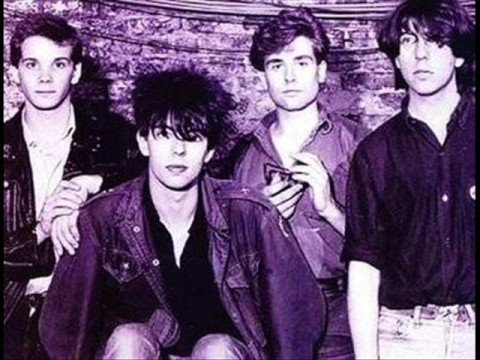 Echo and the Bunnymen Read It In Books