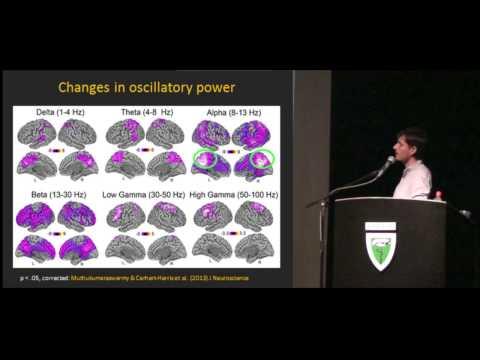 Psilocibina e Psiquiatria / Psilocybin and Psychiatry