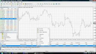 Go Markets - Using the MetaTrader4 Terminal Window for Forex Trading