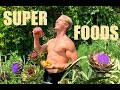Secret SUPERFOODS for Health & Mastery of MARTIAL ARTS!!!