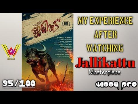 My Experiance After Watching Jallikattu