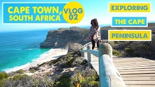 EXPLORING CAPE PENINSULA (by bike, foot, and bus!) | Cape Town, South Africa - Vlog 02