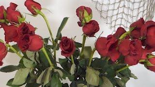 Як оживити зів'ялі троянди